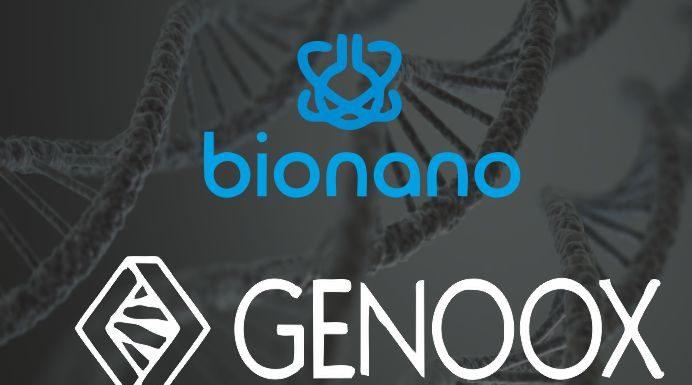 Genoox, Bionano Genomics Partner for DNA Structural Variant Disease Detection