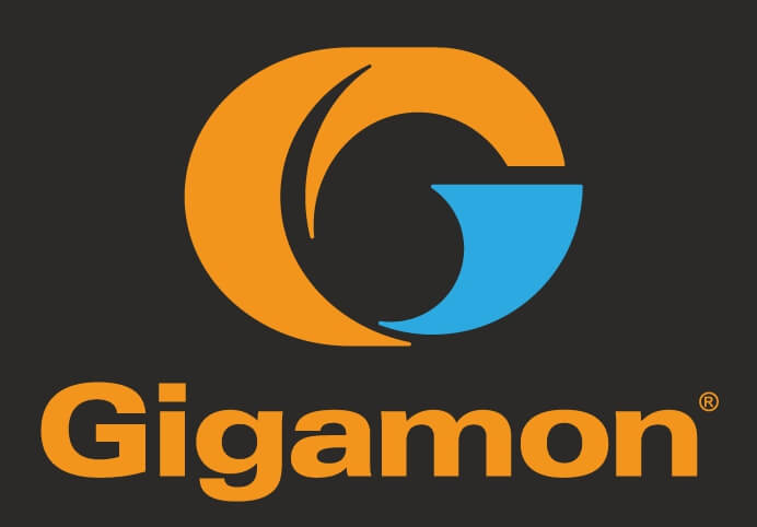 Gigamon Inc All Set To Acquire Cybersecurity Startup