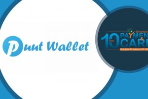 Puut Wallet | Mirror Review